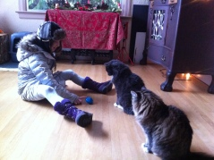 My daughter playing with Gigi and Nathan during our daily visit.